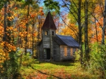 Abanded church in the Forest