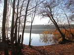 Lake in Late Autumn