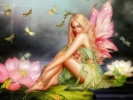 Fairy and Dragonflies