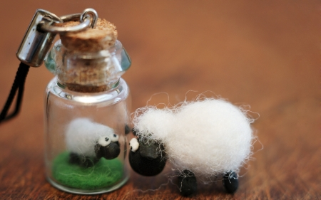 :-) - bottle, sheep, oaie, brown, toy, creative, white