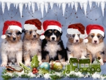 dog-little-puppies-christmas-xmas-dogs-winter-background-photo