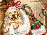 Dog In Christmas Stocking