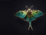 Moth jewel