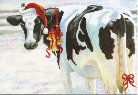 Christmas,Cow - cow, heffer, christmas, white, country, hat, winter, card