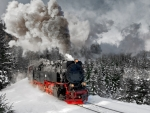 Steamtrain in Harz Mountains, Germany
