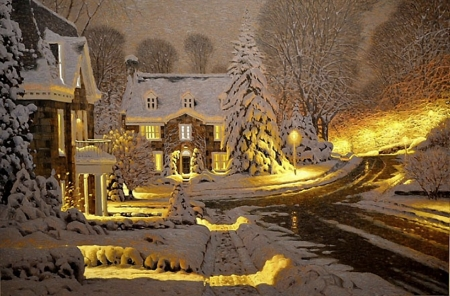 Winter night - color, beautiful, nature, season, landscape, street, winter, houses, outdoor, night