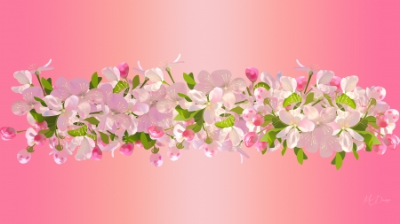Cherry Blossoms - gradient, sakura, border, nature, spring, delicate, pink, cherry blossoms, Firefox theme