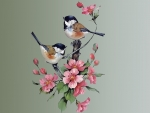 Painted Chickadees