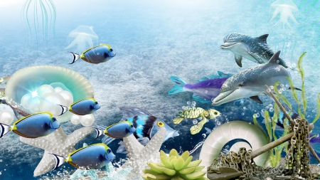 Under Water - fish, sea, under water, water, dolphin, sea shells, ocean