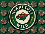 Minnesota Wild 3D and script logo