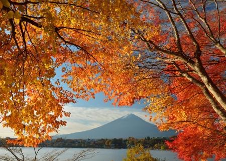 Mount Fuji Other Nature Background Wallpapers On Desktop Nexus
