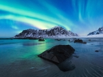 Polar Lights in Lofoten