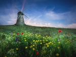 Whitburn Windmill, United Kingdom