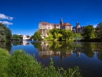 Sigmaringen Castle (Germany)