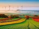 Windmills in the Autumn Field