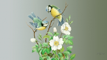 Pretty Birds - floral, Firefox theme, garden, birds, flowers, summer, spring