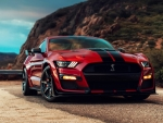 Ford Mustang GT-500