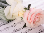 Roses and Notes