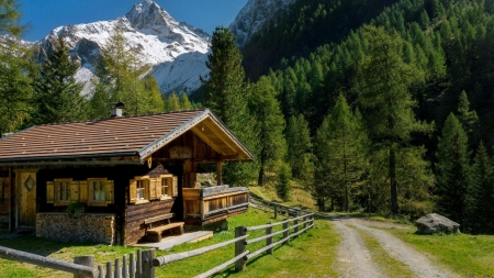 Little Log Cabin - forest, hut, austria, nature, cabin, trees, alps