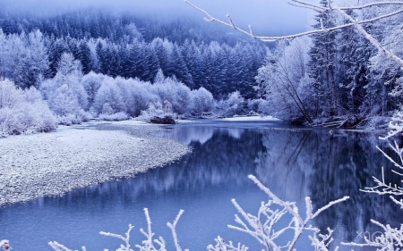 Winter Landscape Winter Nature Background Wallpapers On