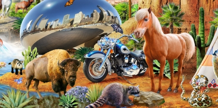 :-) - fantasy, luminos, adrian chesterman, horse, raccoon, animal, motorcycle