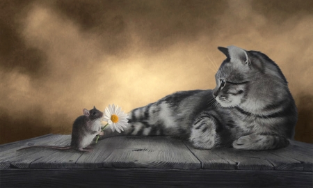 Will You be My Friend? - Cat, mouse, friendship, digital, browns, sweetness, daisy, animals