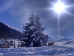 Greetings from alps italiano...ciao...