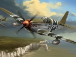 P51 Flying Cadillac(Mustang)