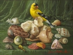Shells with yellow bird