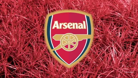Arsenal F.C. - arsenal, Club, Arsenal, Sport, London, gunners, Emblem, Logo, arsenal fc, Football, Team, Arsenal FC, Soccer