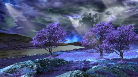 Purple Spring - hdr, spring, trees, purple