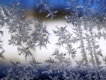 Frost on my window