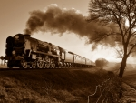 Steam train cross-country