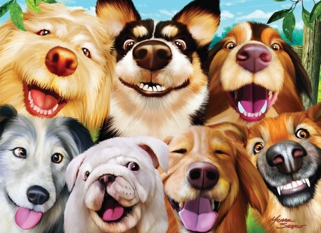 funny dog backgrounds wallpapers
