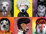 Famous icons pets