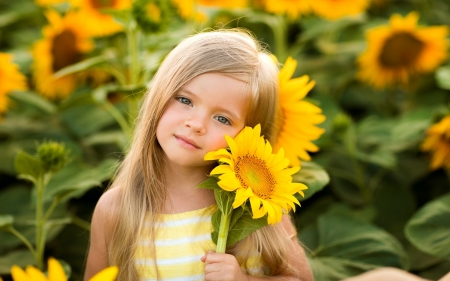 Little Girl with Sunflowers - cute, little, sunflowers, girl, child