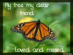 IN MEMORY OF CHERIE..''MONARCH''