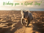 "Koala ""Wishing you a Great Day"""