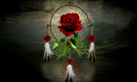 Rose Dream Catcher - Reflection, native American, red, rose, beautiful, Dream catcher, feathers