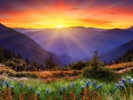 Mountain Sunrise in the spring