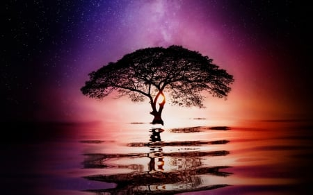 Tree in Sunset - colors, photoshop, sky, light, water