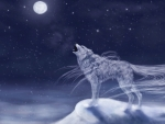 Moonlight Howl