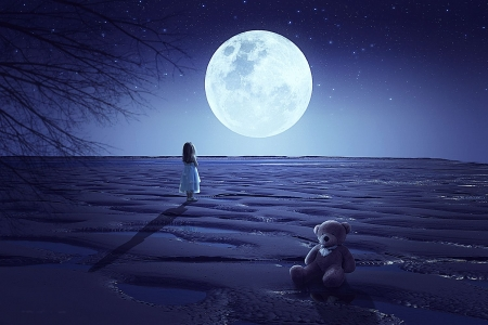 Big Moon - art, teddybear, girl, night, digital