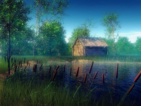 SIMPLE LIFE - pond, house, plank, grass, graphic