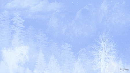 Winter Blues - widescreen, snow, white, trees, clouds, sky, blue, winter