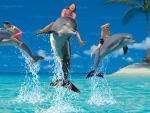 Dolphin Riders