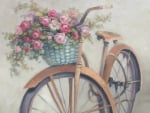 Roses Bicycle