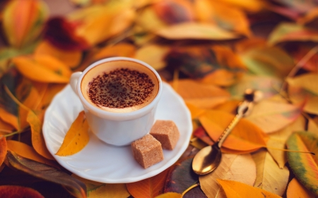 autumn coffee - autumn, coffee, leaf, spoon, sugar, cup