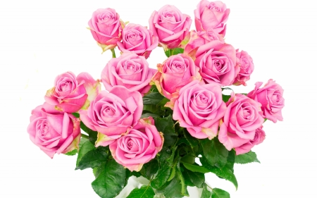 Bouquet of roses - rose, bouquet, day, flower, valentine, mother, pink, trandafir