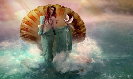 Siren of The Sea - Sirens, water, shell, ocean, magical, Enchanting, softness, sea, lovely